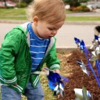 A child plants a pinwheel during Child Abuse Prevention Month.