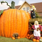The fall decor in Pigeon Forge is an important part of the city's Autumn Fest.